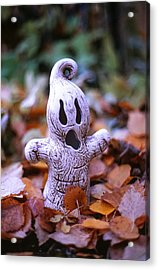 Acrylic Print featuring the photograph Spooky Autumn by Aaron Aldrich