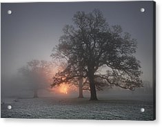 Spooky Misty Morning  Acrylic Print