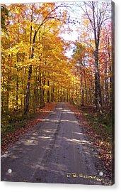 Spooner Road Acrylic Print