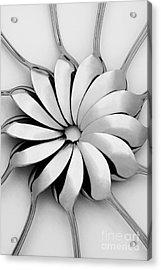Spoons I Acrylic Print