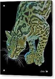 Spotted Predator Acrylic Print by Larry Linton