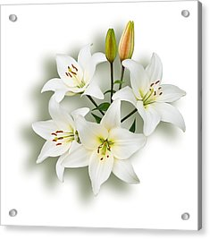 Spray Of White Lilies Acrylic Print