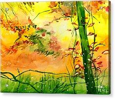 Spring 1 Acrylic Print by Anil Nene
