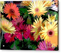 Spring 13 Acrylic Print by Shirley Sparks