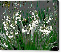 Spring 3 Acrylic Print by Shirley Sparks
