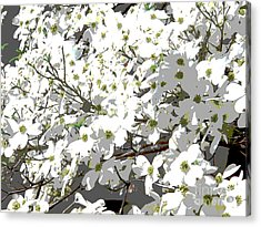 Spring 8 Acrylic Print by Shirley Sparks