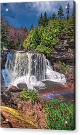 Spring At Blackwater Falls Acrylic Print