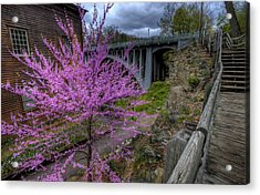 Spring At The Mill Acrylic Print