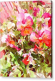 Spring Begins Acrylic Print by Jim Pavelle