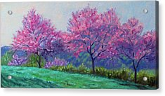 Spring Blossoms On Mill Mountain Acrylic Print
