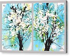 Spring Blossoms Acrylic Print by Sumiyo Toribe