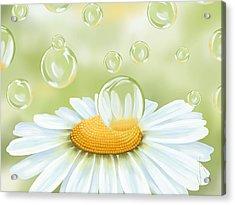 Spring Bubble Acrylic Print