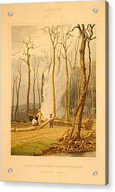 Spring--burning Fallen Trees In A Girdled Clearing--western Acrylic Print by Litz Collection