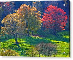 Spring Color Just Down The Road Acrylic Print by Alan Olansky