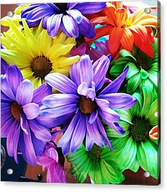 Spring Colors 1 Acrylic Print
