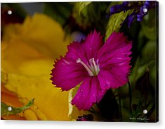Acrylic Print featuring the photograph Spring Colors by Kathy Ponce