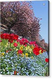 Spring Colours - Edinburgh Acrylic Print