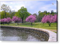 Spring Cove Acrylic Print by Diana Angstadt