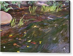 Spring Creek In Oak Canyon Park Acrylic Print by Angela A Stanton