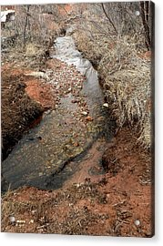 Acrylic Print featuring the photograph Spring Creek Trail Crossing by Deborah Moen