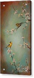Spring Dream Acrylic Print by Lori  McNee