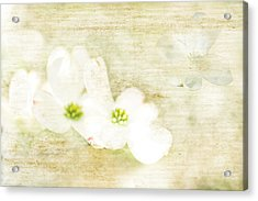 Spring Dreams Acrylic Print