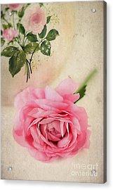 Spring Elegance Acrylic Print by Darren Fisher