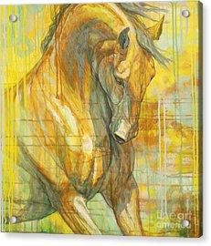 Spring Energy Acrylic Print by Silvana Gabudean Dobre