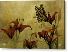 Spring Fever Acrylic Print by Diane Schuster