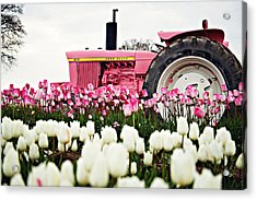 Spring Fever  Acrylic Print by Michelle Bauer