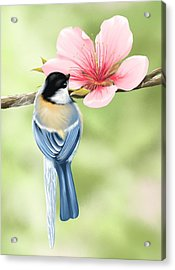 Spring Fever Acrylic Print by Veronica Minozzi