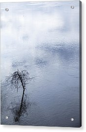 Spring Flood In Georgia Acrylic Print