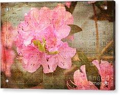 Spring Floral Acrylic Print