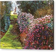 Spring Flower Fantasy Acrylic Print by David Lloyd Glover