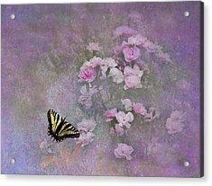 Spring Garden Acrylic Print by Diane Schuster