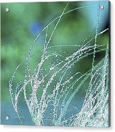 Spring Grass Acrylic Print