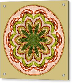 Spring Grasses Mandala Acrylic Print