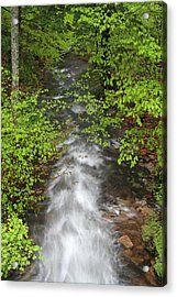 Spring Green Framing Bubble Brook  Acrylic Print by Juergen Roth