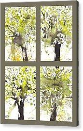 Spring Green Acrylic Print by Sumiyo Toribe