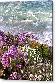 Acrylic Print featuring the photograph Spring Greets Waves by Susan Garren