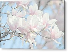 Acrylic Print featuring the photograph Spring Has Arrived 3 by Susan  McMenamin