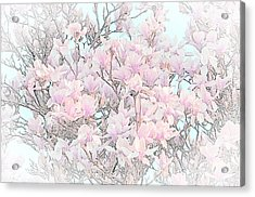 Acrylic Print featuring the photograph Spring Has Arrived I by Susan  McMenamin