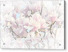 Acrylic Print featuring the photograph Spring Has Arrived II  by Susan  McMenamin