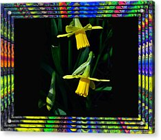 Spring In A Frame Acrylic Print by Larry Bishop