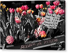 Acrylic Print featuring the photograph Spring In A Wagon by Sandi Mikuse