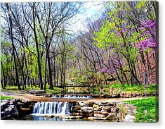Spring In Dogwood Canyon Acrylic Print