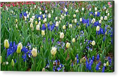 Spring In Giverny Acrylic Print