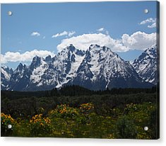 Spring In Grand Tetons National Park Acrylic Print