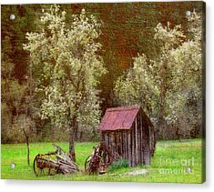 Spring In Old Ranch Acrylic Print