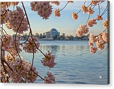 Spring In The Nation's Capital Acrylic Print by Jared Perry